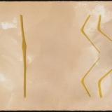 Lesser Yellowleggs